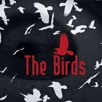the-birds-7694