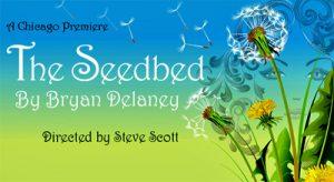 SeedbedWeb400