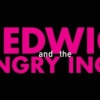 """Hedwig and the Angry Inch"""